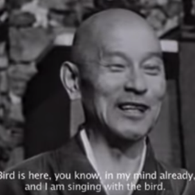 Shunryu Suzuki Roshi über Sound vs. Noise